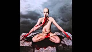 Meshuggah - Combustion (20% Slower)