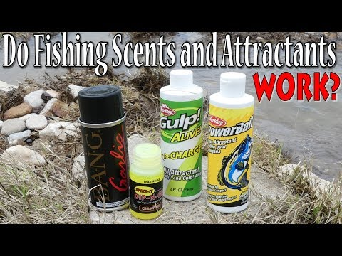 Do Fishing Scents And Attractants Really Help Catch More Fish?