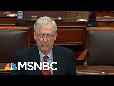 McConnell Asserts Trump Is 'Within His Rights' To Look Into Election 'Irregularities' | MSNBC