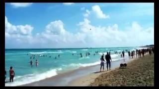 Gambar cover Dj Taro Sr   Brand New Day128   YouTube 3