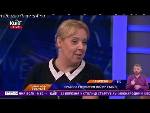 Телеканал Київ: 19.03.19 Київ Live 17.10