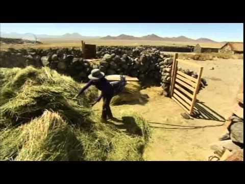 Deserts and Life Atacama desert prt1