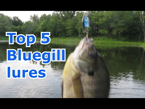 Best 5 Lures For Bluegill And Panfish - Tips And Techniques
