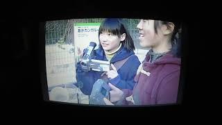 私の見た動画57『戦後の日本の教育後編』