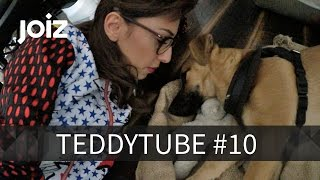 Welpe Teddy am Strand - Der erste Urlaub - TeddyTube #10
