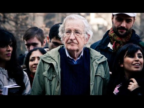 Noam Chomsky - A Functioning Democratic Society