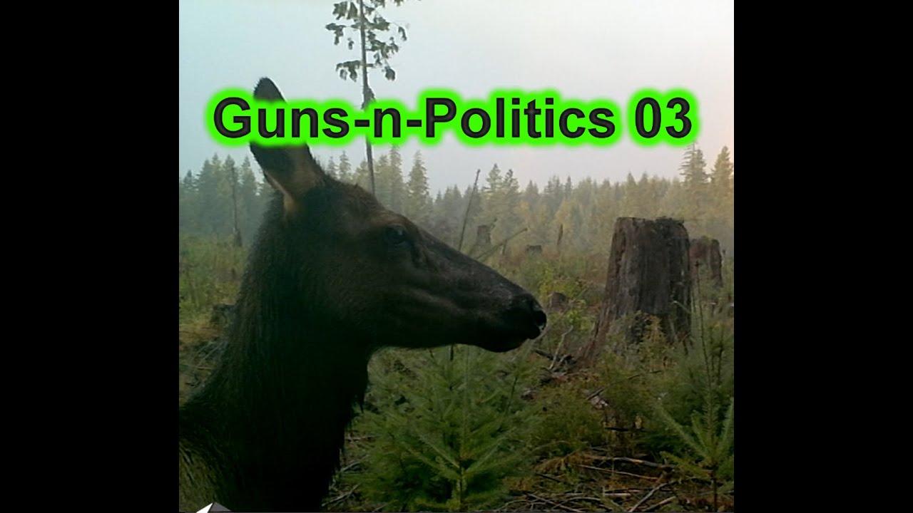 """Guns-n-Politics """"GnP"""" (Get Some!) Podcast 3 10/24/2015"""