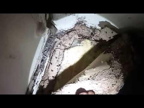 Paddington Qld - termite concealed entry