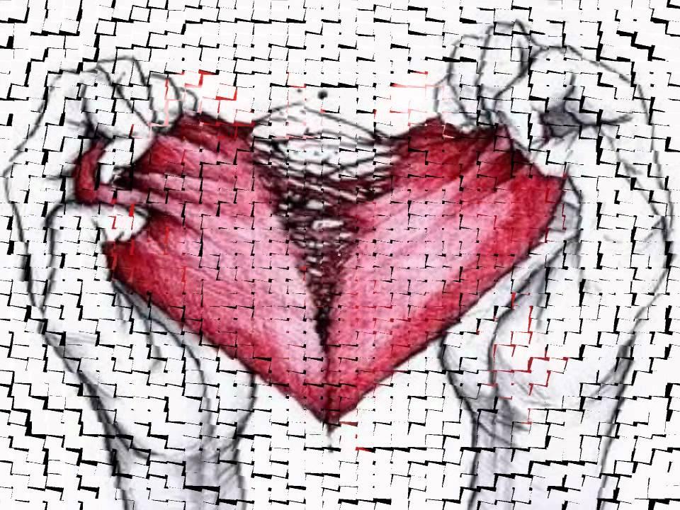 краденое сердце картинки расставалась минуту рождения