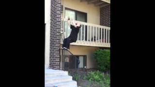 David Toth doing handrail back flip