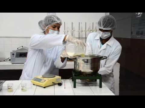 Elaboración de Yogurt Frutado ICP