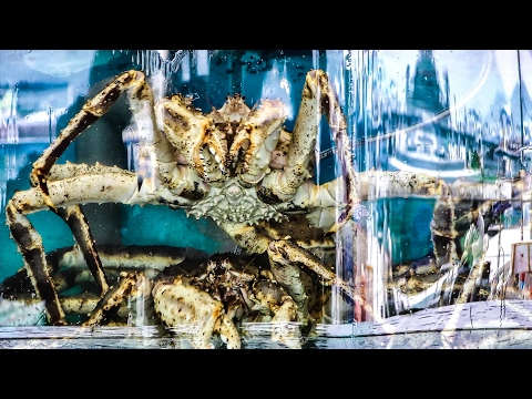 Giant Crab, Lobsters, Big Shrimps. The Fish Market And Restaurants Of Sai Kung, Hong Kong