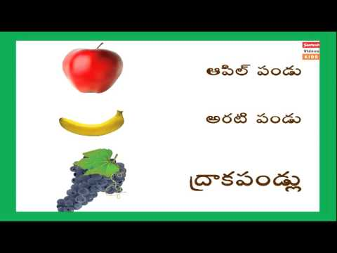 all vegetables names in english to telugu with pictures pdf free