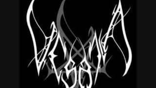 Vesania - Silence makes noise