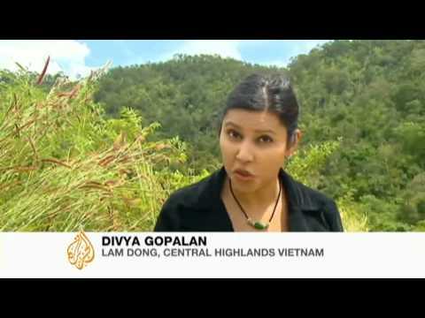 Vietnam farmers paid not to farm - 29 Oct 09