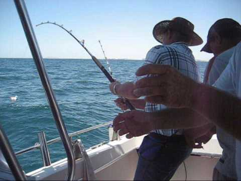 Fishing puerto peñasco Rocky point🎣 from YouTube · High Definition · Duration:  29 seconds  · 185 views · uploaded on 10.04.2017 · uploaded by MAGUIER CAMEZ