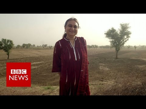 Water Mother- BBC News