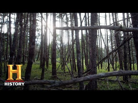 The Curse of Oak Island: Bonus - TK (Season 4) | History