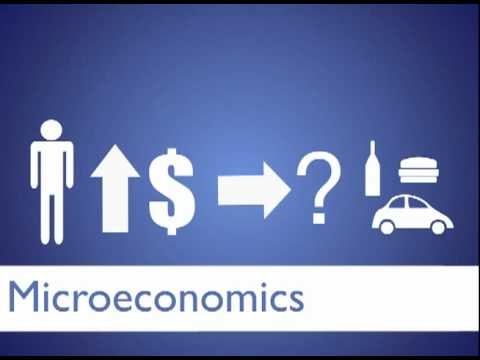 Macroeconomics vs Microeconomics - Difference and Comparison