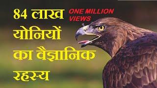84 लाख योनियों का वैज्ञानिक रहस्य Mystery of Infinite Reincarnations by Tech Contrive in Hindi
