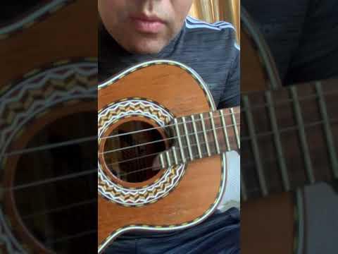 Vendo cavaco Marcelus Luthier Canhotinho Cedro Rosa 2015