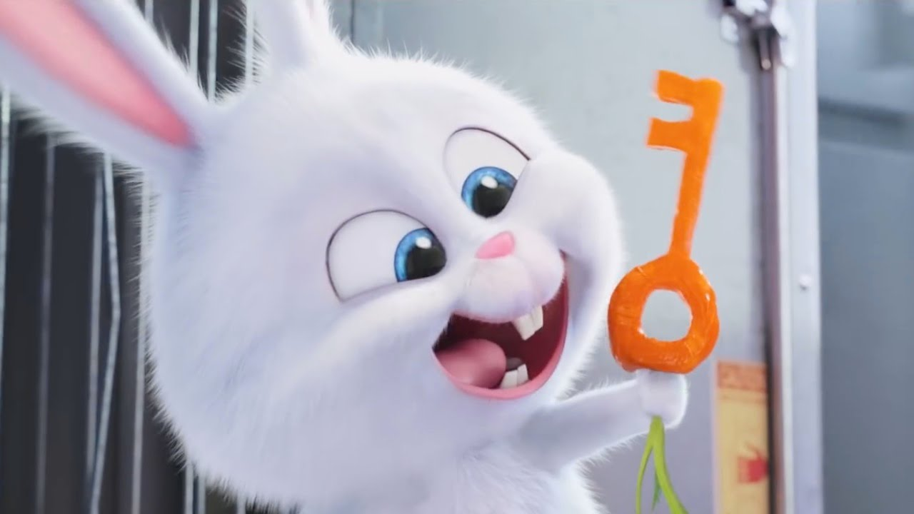 the secret life of pets   kevin hart is snowball