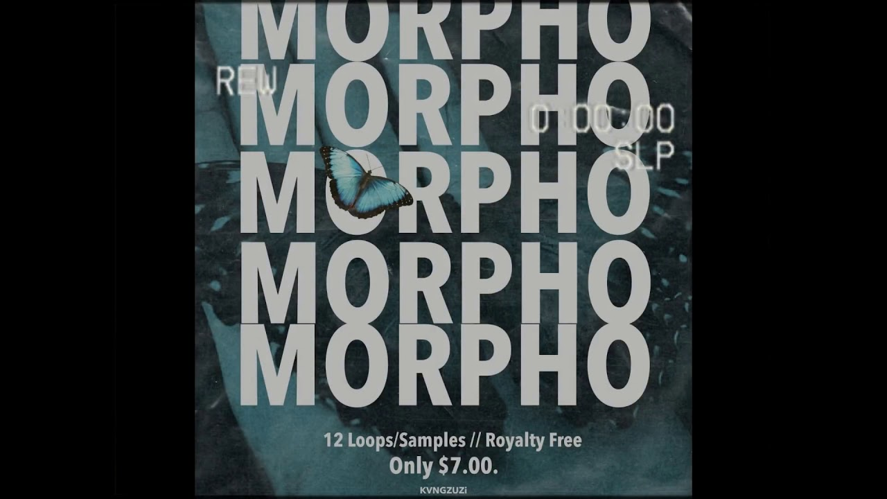 Morpho Sample/Loop Kit Producer Bundle - Drumkits Loops Nexus Soundpacks  Construction Kits for Music Production