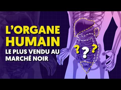 Download Quel est l'organe humain le plus vendu au marché noir ? #shorts