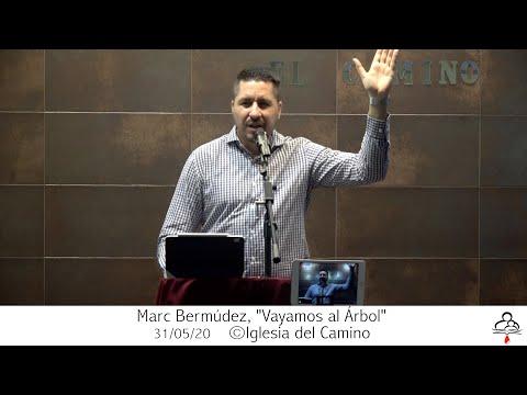 "Marc Bermúdez, ""Vayamos Al Árbol"" 31-05-20."