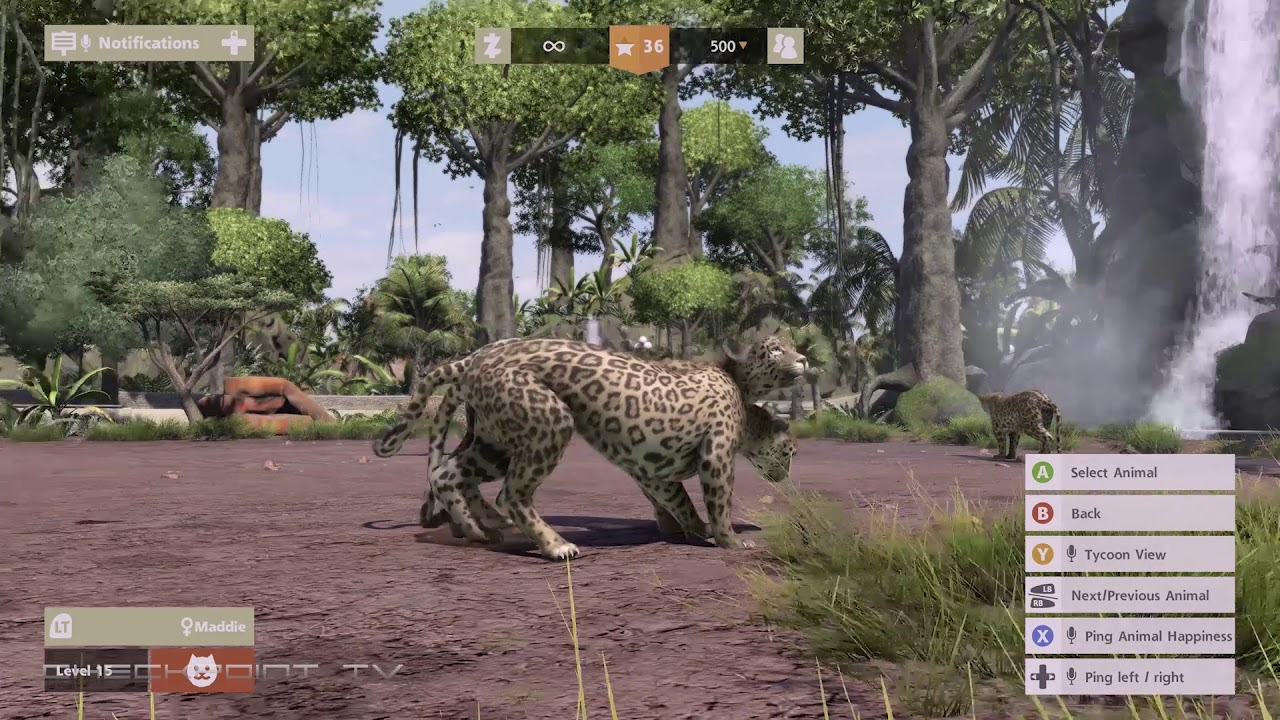Zoo Tycoon Ultimate Animal Collection - The Beasts - Xbox One X