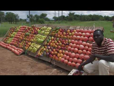 Tzaneen and Surroundings - South Africa Travel Channel 24