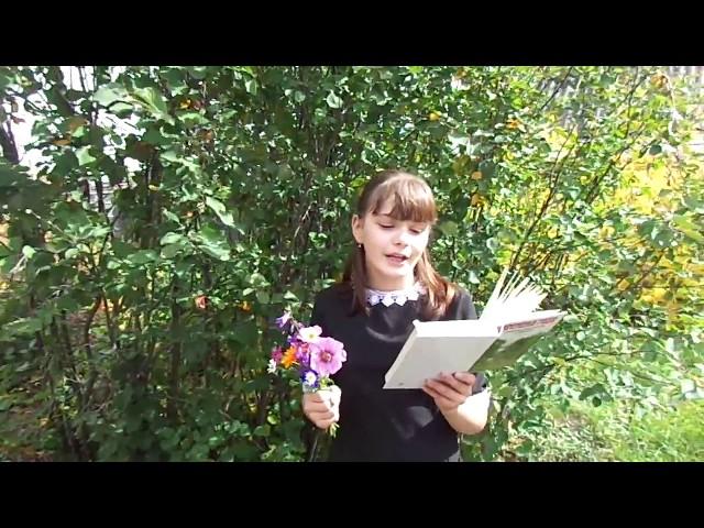 Изображение предпросмотра прочтения – АленаМакарова читает авторское произведение «Поэма о лете»