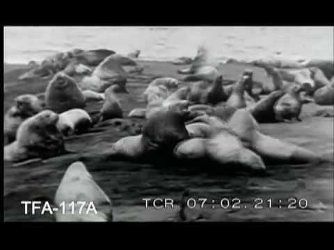 Arctic Thrills, 1927