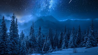 Relaxing Piano Music - Sleep Music, Stress Relief, Winter Photos, Study Music (Sara)