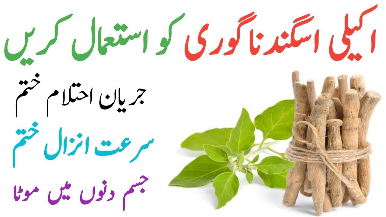 Download Ashwagandha Benefits in Urdu || Asgandh Nagori ke fayde