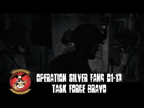 Operation Silver Fang 01-13 Phase 1 - Task Force Bravo