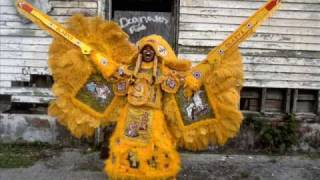 Mardi Gras Indians Down In New Orleans