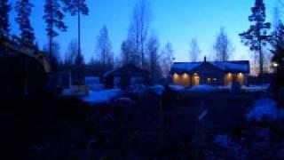 Vintervisa 2011