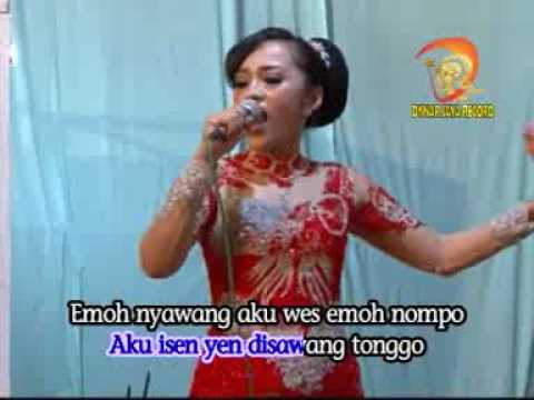 Anake Sopo Campursari (Official Music Video)