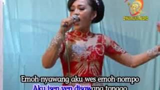 Anake Sopo Campursari (Official Music Video)