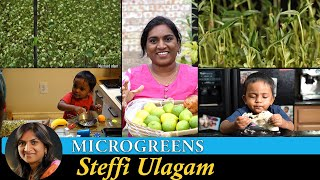 How to Grow Microgreens in Tamil | Lemon harvesting | Steffi Ulagam