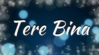 Download Tere Bina Lyrics - Zaeden ft. Amyra Dastur, Kunaal Verma Mp3 and Videos