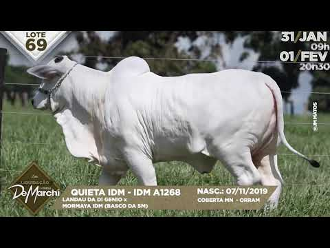 LOTE 69