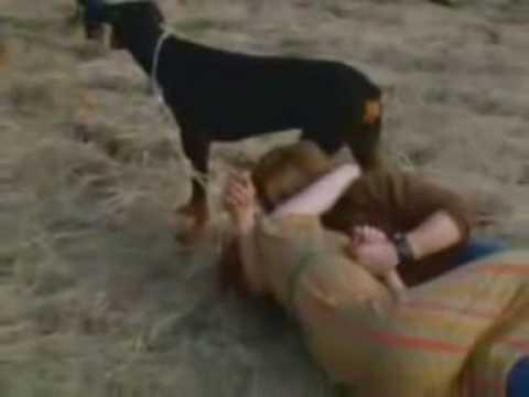 Dik Dik  - L'Isola di Wight   1970