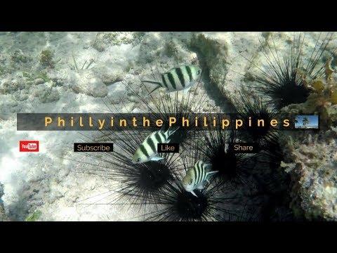 Live Stream Test : 2018 Angeles City, Philippines