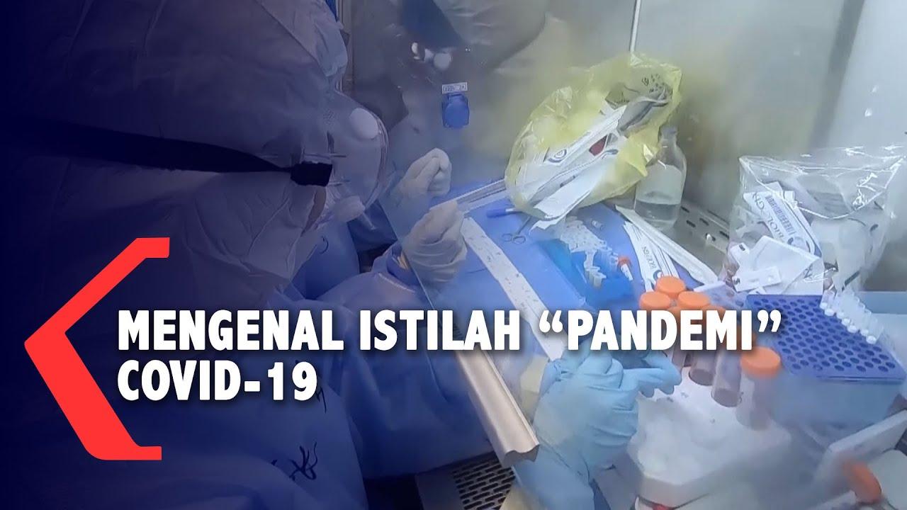Mengenal Istilah Pandemi untuk Wabah Virus Corona