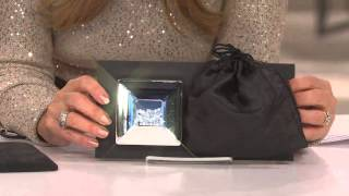 Silver Safekeeper Floating Stones Jewelry Box By Lori Greiner With Nancy Hornback