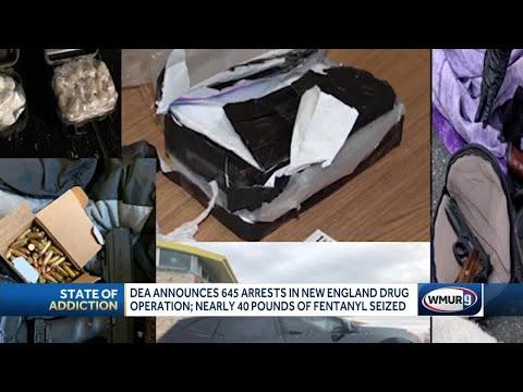 Drugs, Cash Seized In Two-week DEA Surge