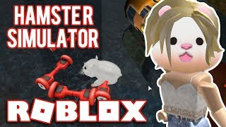 WE are a HAMSTER//Roblox-Hamster Simulator
