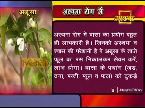 Ayurvedic Benefits of Vasa For Asthma Rog | Acharya Balkrishna